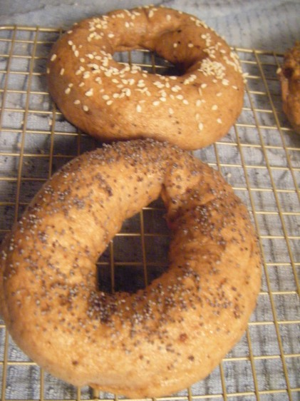 These are the boiled, but not baked bagels!